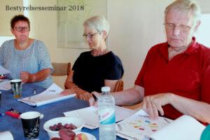 Bestyrelsesseminar 2018 Guldborgsund Frivilligcenter