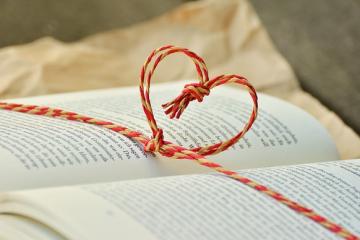 Bog med hjerte, Guldborgsund Frivilligcenter