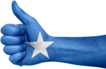 Somalisk hånd Guldborgsund frivilligcenter